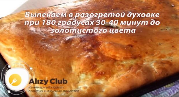 Как приготовить пирог с мясом и капустой в духовке по пошаговому рецепту с фото и видео