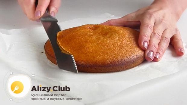 Разрезаем коржи для приготовления торта из тыквы