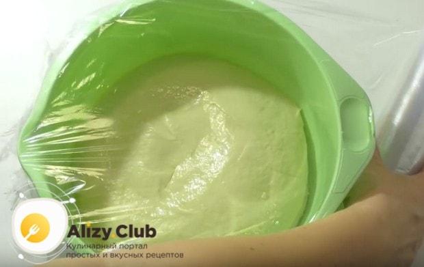 Смазываем тесто растительным маслом, затягиваем пищевой пленкой и отправляем в теплое место.