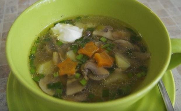 Как приготовить грибной суп из шампиньонов по пошаговому рецепту с фото