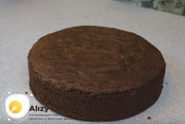 Надеемся, вам понравился такой простой рецепт шоколадного бисквита для торта.