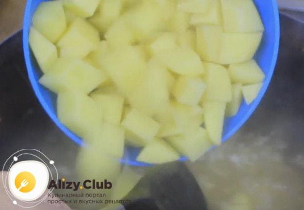 В бульон к рису добавляем картофель.
