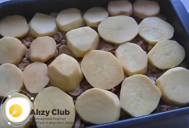 Картофель нарезаем кружочками и выкладываем в один слой на грибы.