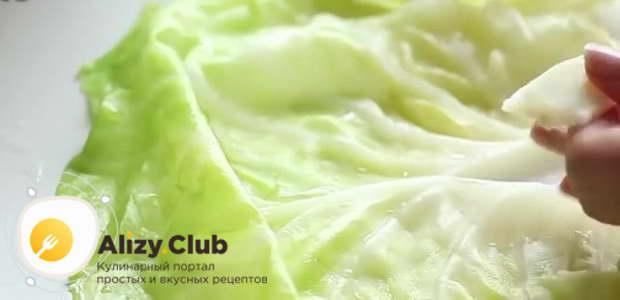 С остывших листьев срезаю толстые волокна