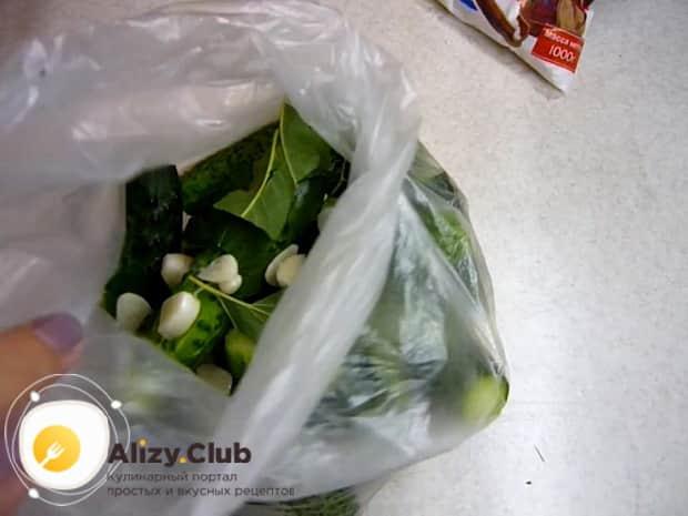 Для засолки огурцов в собственном соку соедините ингредиенты в пакете.