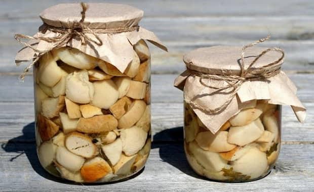 Рецепт маринованных белых грибов – как их мариновать