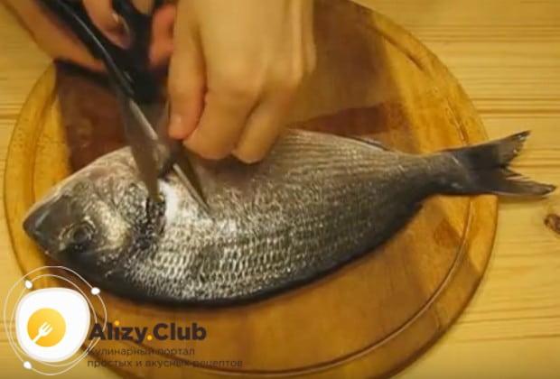 Тщательно промываем рыбу, отрезаем плавники.