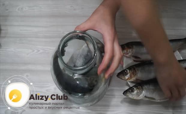 Смотрите как вкусно засолить селедку в домашних условиях