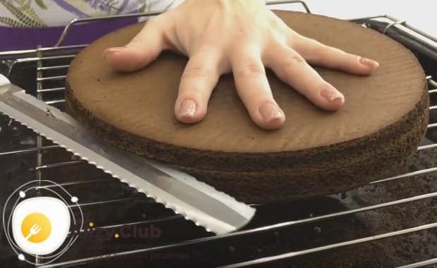 Остывший корж разрезаем на три одинаковых части.