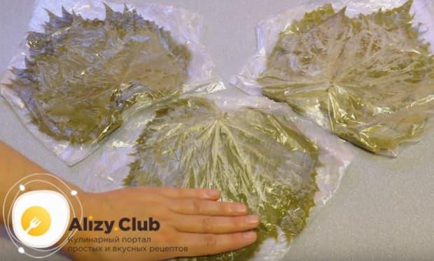 Мы приготовили три стопочки листьев, которые будем хранить в морозилке.