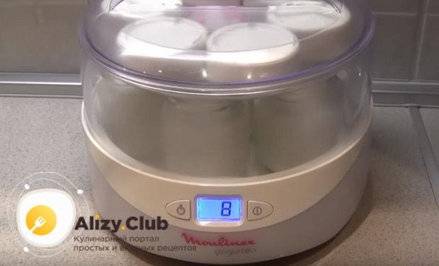 Лучшие рецепты приготовления йогурта в йогуртнице