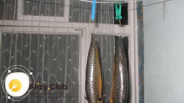 Для приготовления скумбрии в бутылке в луковой шелухе, подсушите рыбу
