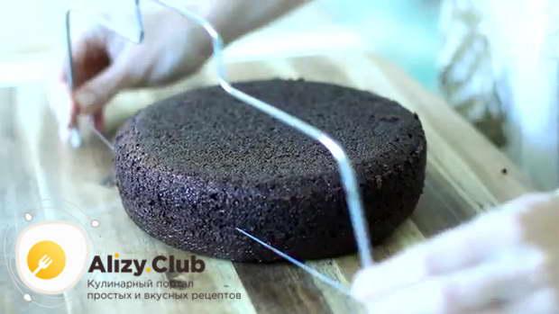 Собираем шоколадный торт
