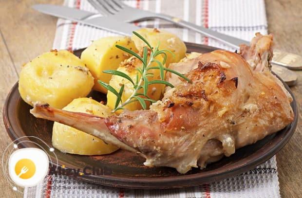Узнайте как следует готовить тушеного кролика в сметане по пошаговому рецепту