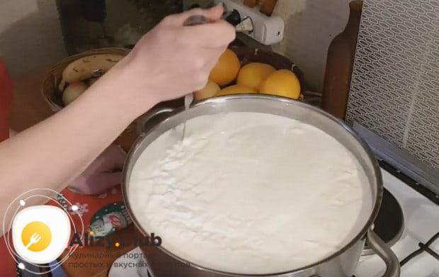 Вот так должна выглядеть масса для приготовления твердого козьего сыра на этом этапе.